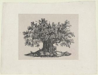 Chène chapelle d'Alouville [sic] dans le pays de Caux | Engelmann, Godefroy (1788-1839)