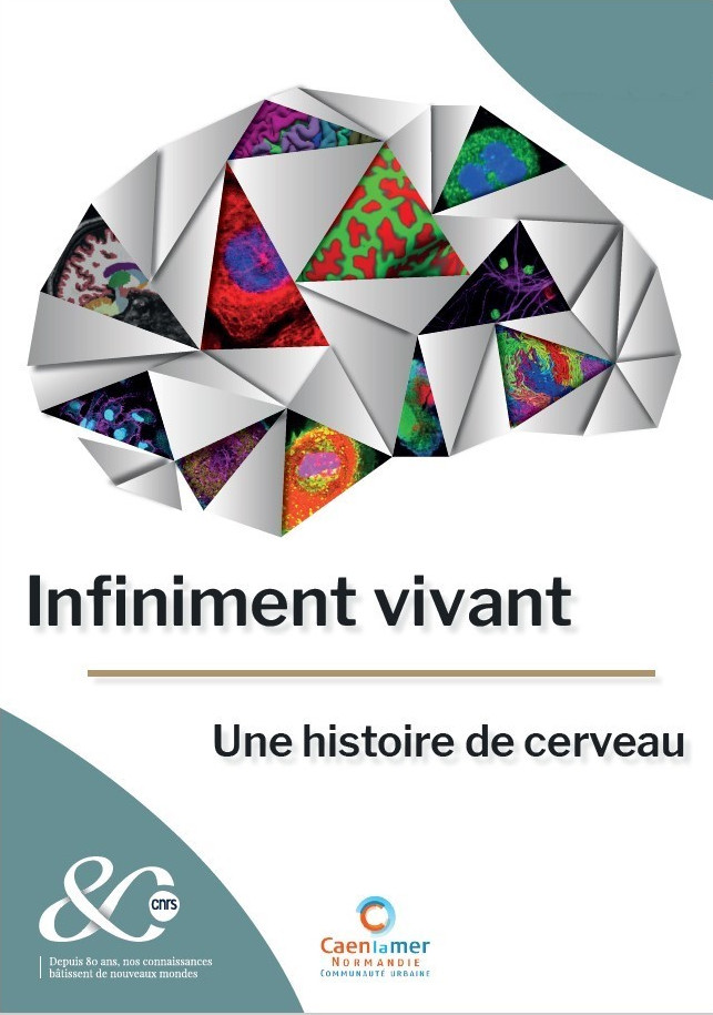 https://bibliotheques.caenlamer.fr/default/caen-bibliotheques-de-caen-fete-de-la-science-2019.aspx