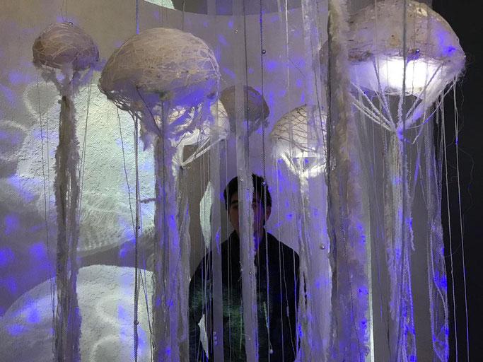 Le cercle des méduses |